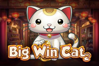 Big Win Cat slot machine free play